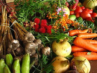 330px-Ecologically_grown_vegetables